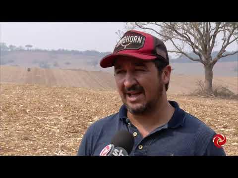 Plantio de soja: preparação no Sul de Minas